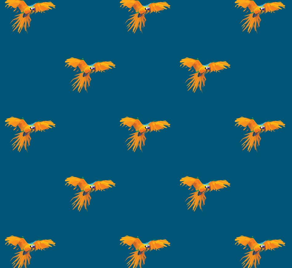 Parrots!_5x.png