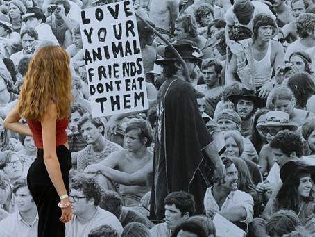Woodstock in Paderborn