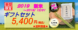 top-2019新米5400.PNG