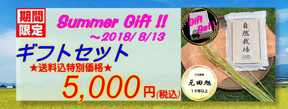 サマーギフトセット★送料込特別価格5000円★