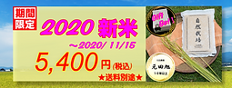 top-2020新米5400-1.PNG