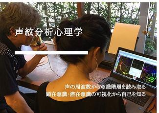 声紋分析心理学 (1).jpg
