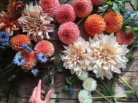 florals 1.jpg