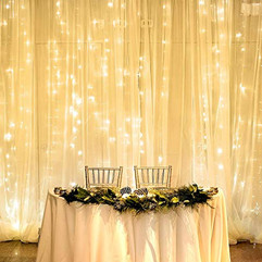Backdrop & LED Fairy Lights