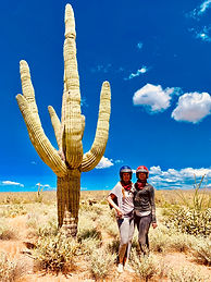Beautiful blue skies and a gian saguaro on a desert atv tour