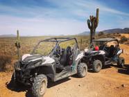 Saguaro's & UTV's