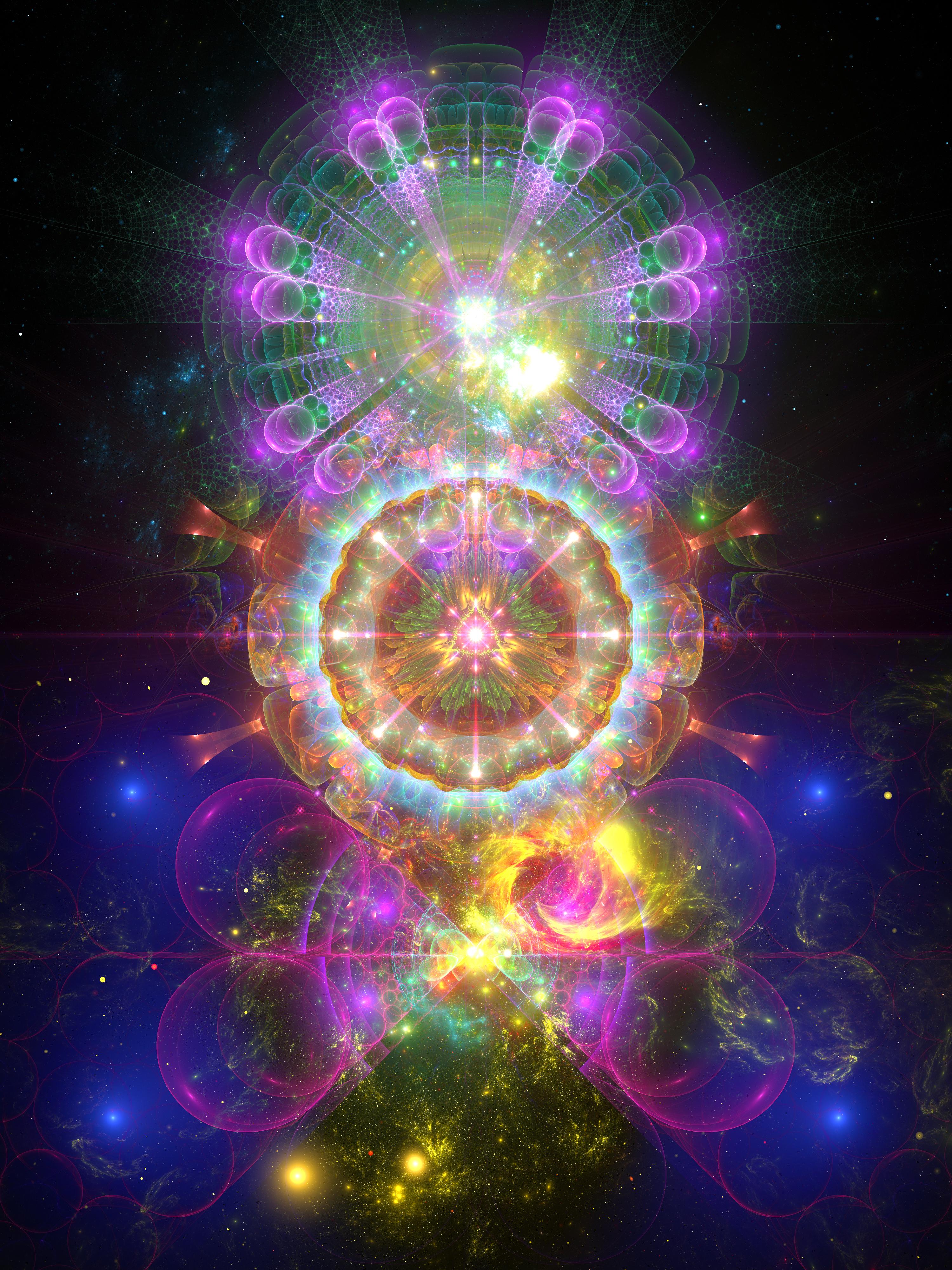 Flowering Cosmos 1