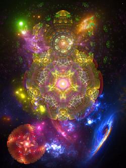 Flowering Cosmos 2