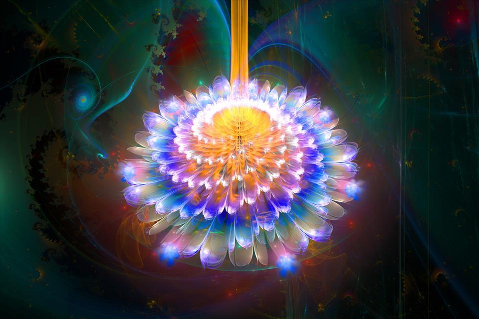 Fractal Flower 5