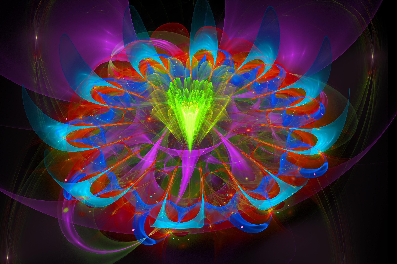 Fractal Flower 3