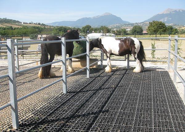 Ecoraster paddock installation