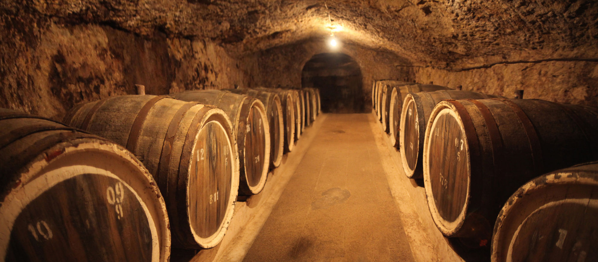 Bodega vino_opt