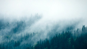 Passado, neblina.