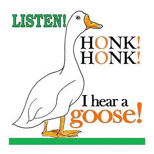 Listen WIX Pic 3 Goose.jpg