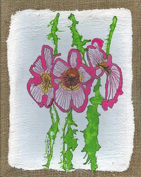 """""""Orchids on Burlap"""""""