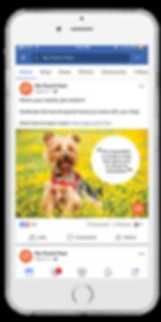 social-media-marketing-services.png