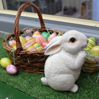 Happy Easter at Josies bright beginnings. childcare near me, hillside, kindergarten, josie's bright beginnings, kindergarten near me. long