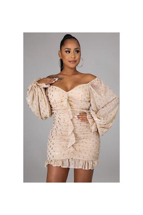Ruched Sexy Chiffon Dress