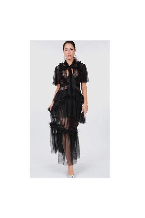 Ruffle Mesh Sheer Dress