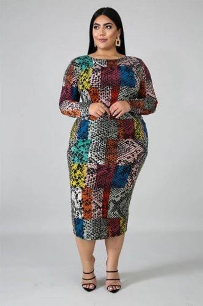 Multi Color Print Midi Dress