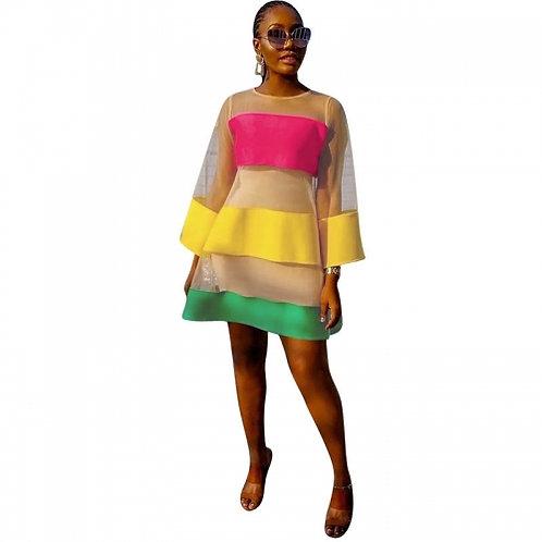 Organza Mesh Mini Dress