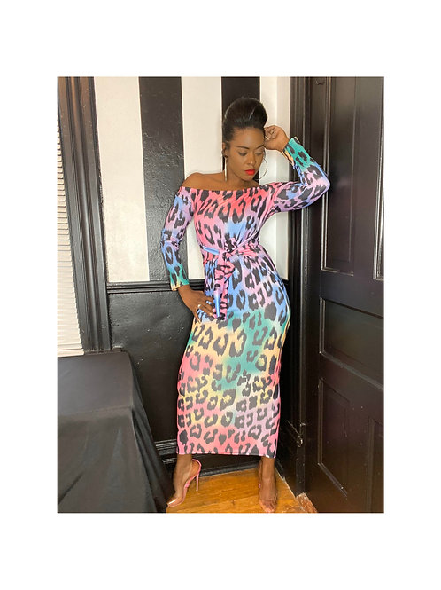 Multi Color leopard Print dress