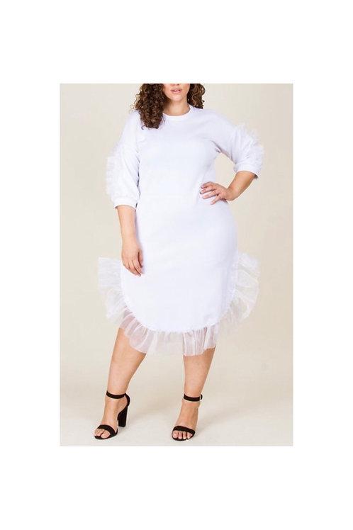 Mesh Ruffle Bottom Dress