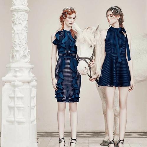 Designer Sleevless Ruffle Party Dress