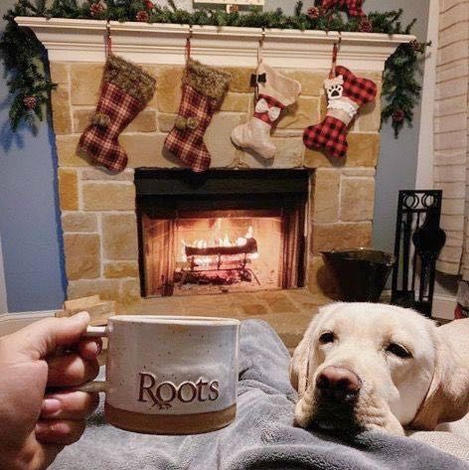 Roots Coffee House