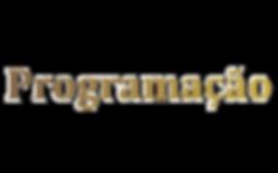 Programação vetor2.png