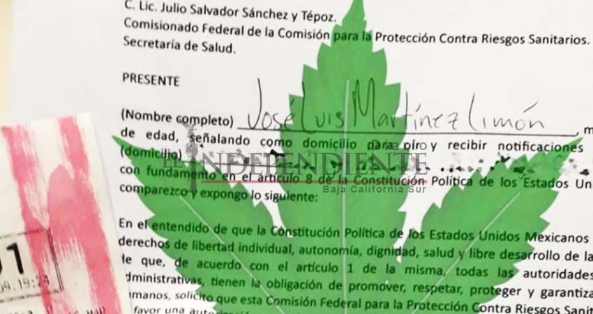 tramite para permiso de marihuana en mexico cbdmex.com