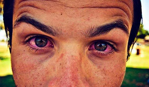 ojo rojo cbdmex.com