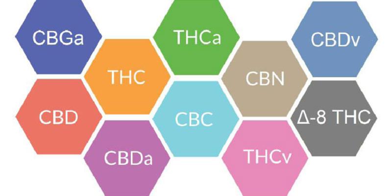 full spectrum cbd cbdmex.com