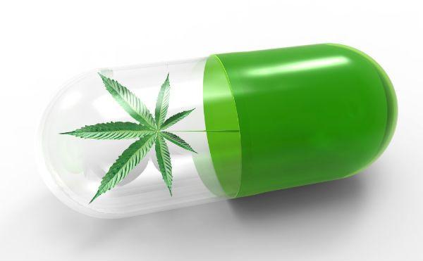 cannabis y dolor cbdmex