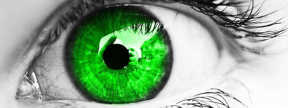 ojo cannabis cbdmex.com
