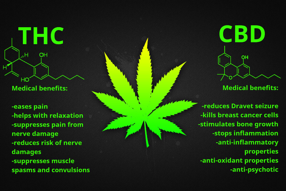 the cbdmex.com