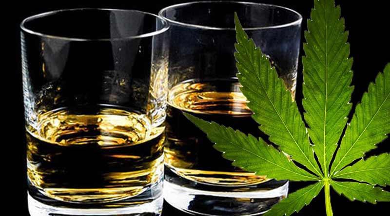 cbd y alcohol cbdmex.com