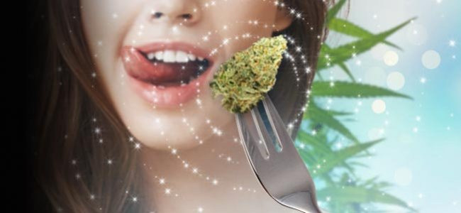digestion cannabis cbdmex.com