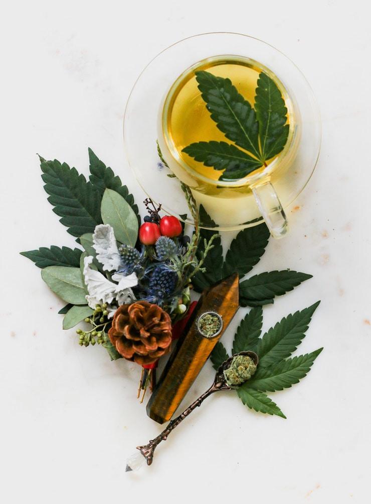aceite cannabis