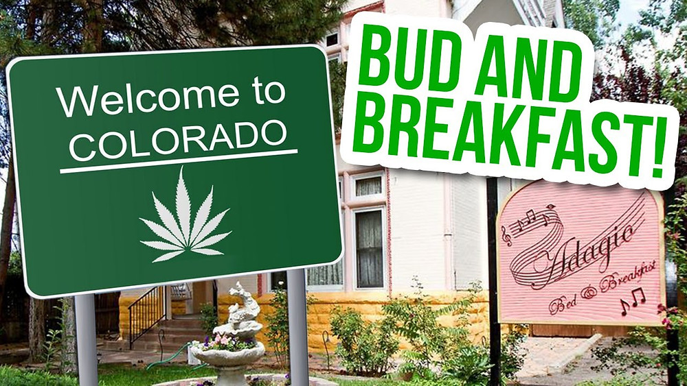 bud and breakfast cbdmex.com