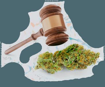 situacion legal cbdmex.com