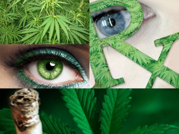glaoucoma y cannabis