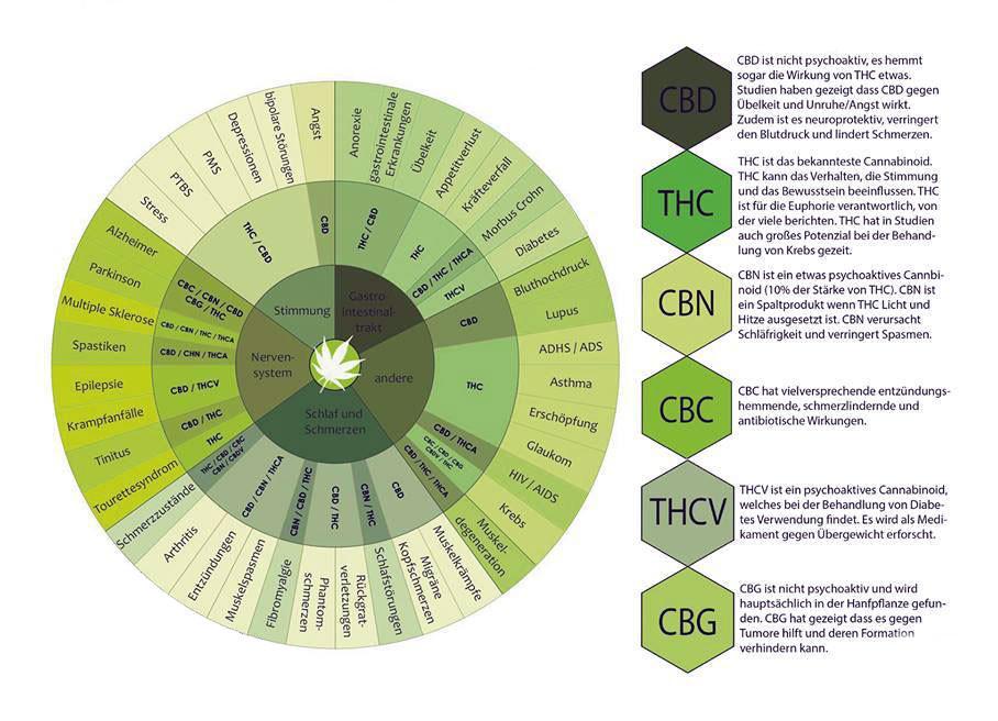 cannabinoids cbdmex.com