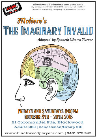 imaginary invalid poster.jpeg