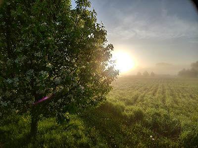 Sunrise best.jpg