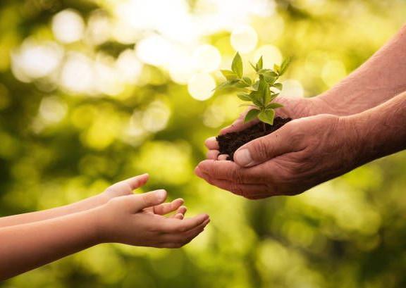 enfant et parent fleur.jpg