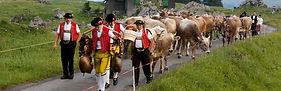 ©_Switzerland_Tourism_(Large).jpg