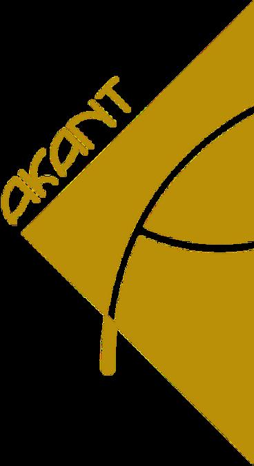 AKANT-Logo-DEF-WEB-4_edited_edited.png