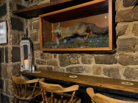 The Fox! & Seating Area