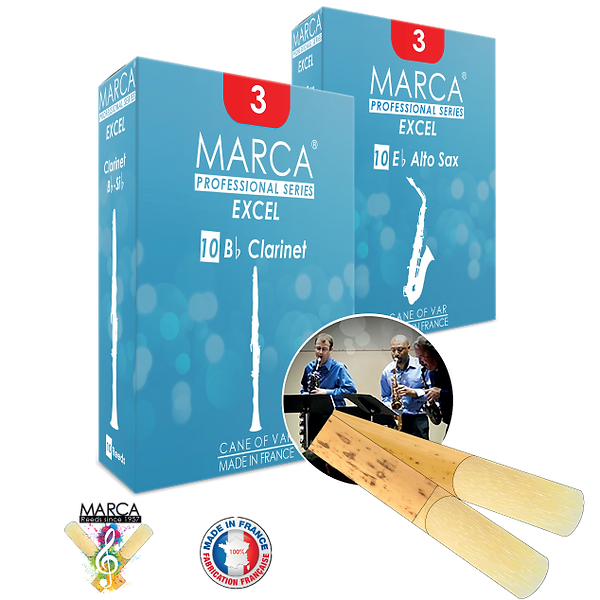 MARCA_Excel_2Box.png